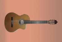 Camps NAC-2 Pro-Blend cedar - klasická kytara se snímačem