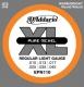 D'Addario EPN 110 - struny na elektrickou kytaru 10/45