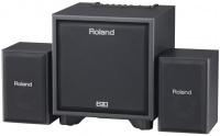 Roland CM 110 - 2.1 monitor